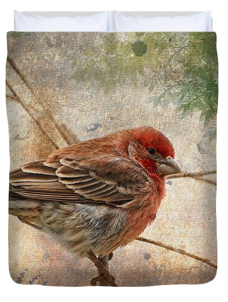 Finch Art Or Greeting Card Blank Duvet Cover by Debbie Portwood