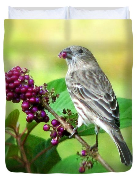 Finch Eating Beautyberry Duvet Cover