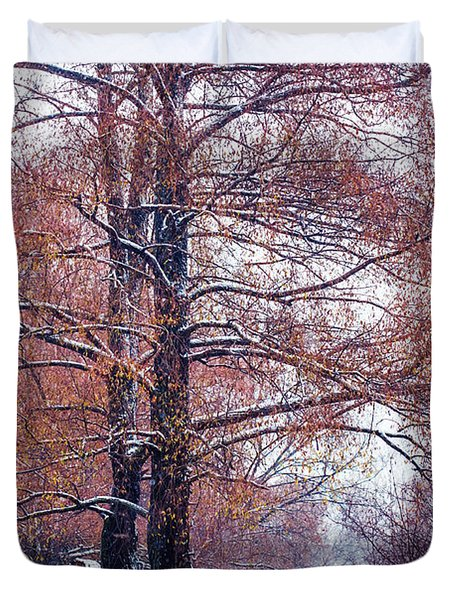 First Snow. Winter Coming Duvet Cover by Jenny Rainbow