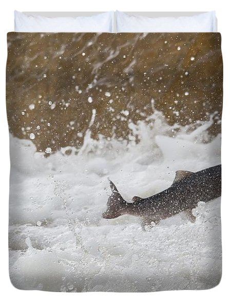 Fish Jumping Upstream In The Water Duvet Cover by John Short