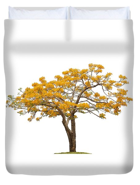 Flam Of The Forest Duvet Cover by Atiketta Sangasaeng