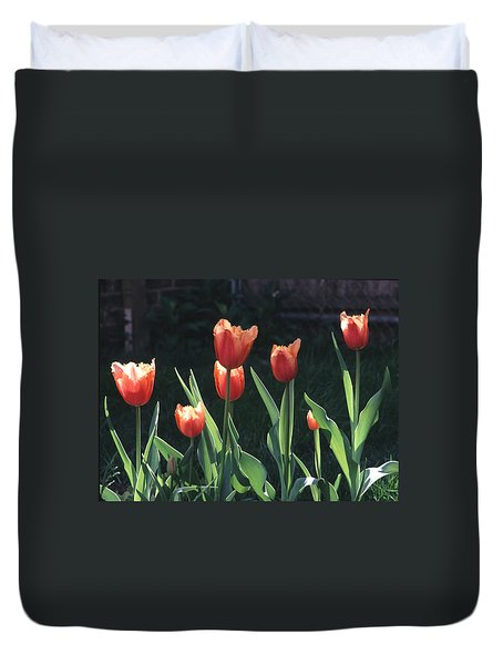 Duvet Cover featuring the photograph Flared Red Yellow Tulips by Tom Wurl