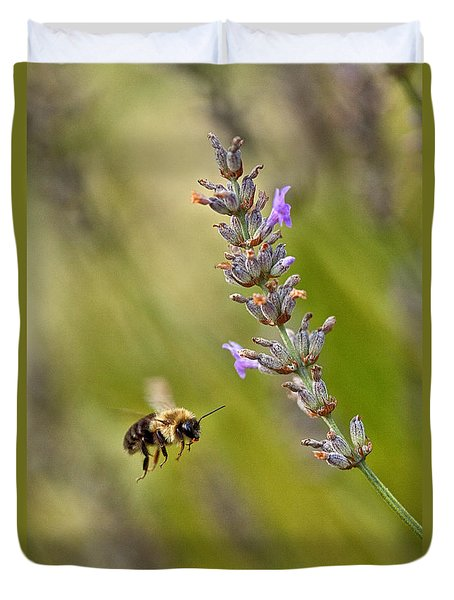 Flight Of The Bumble Duvet Cover by Karol Livote