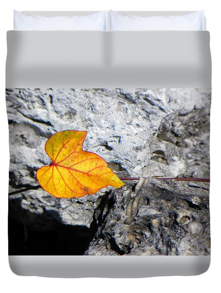 Duvet Cover featuring the photograph Floating On Stone by Rosalie Scanlon
