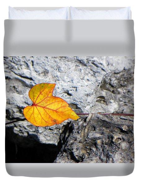 Floating On Stone Duvet Cover by Rosalie Scanlon