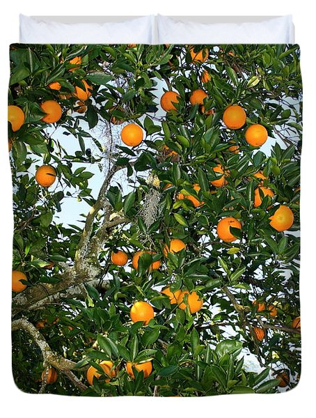 Florida Oranges Duvet Cover by Carol Groenen