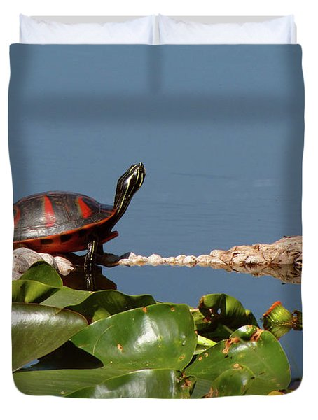 Florida Redbelly Turtle Duvet Cover