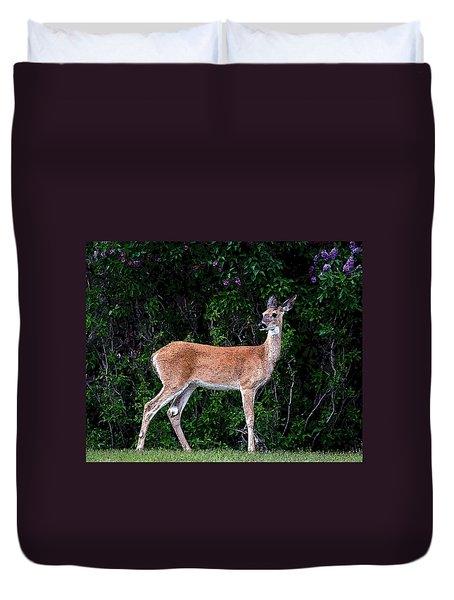 Flower Deer Duvet Cover by Steve McKinzie