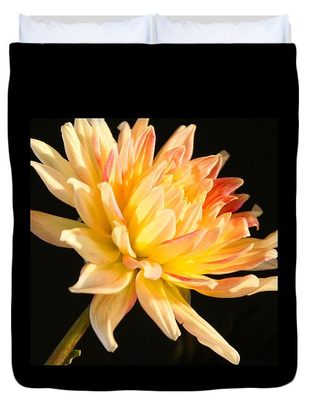 Duvet Cover featuring the photograph Flower Reflected On Black by Donna Corless
