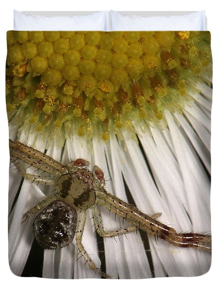Flower Spider On Fleabane Duvet Cover