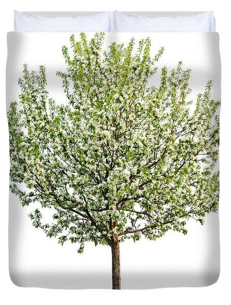 Flowering Apple Tree Duvet Cover by Elena Elisseeva