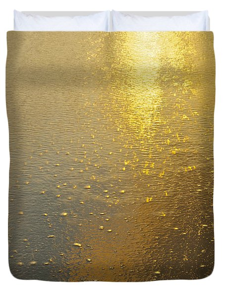 Flowing Gold 7646 Duvet Cover by Michael Peychich