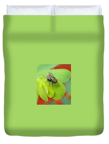 Fly After The Rain Duvet Cover by Paul  Wilford