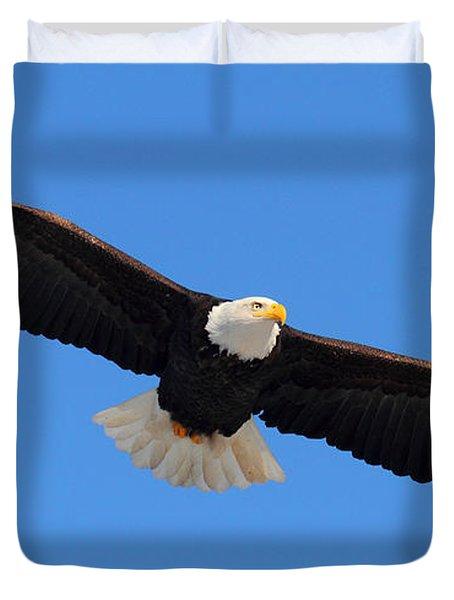 Flying Bald Eagle Duvet Cover by Doug Lloyd