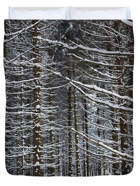 Forest Of Marburg In Winter Duvet Cover by Axiom Photographic
