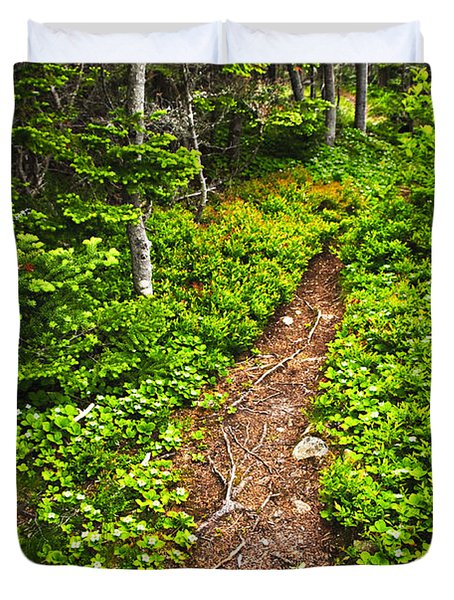 Forest Path In Newfoundland Duvet Cover by Elena Elisseeva
