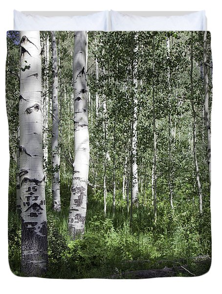 Forever Aspen Trees Duvet Cover by Madeline Ellis