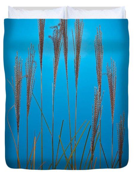 Fountain Grass In Blue Duvet Cover by Steve Gadomski