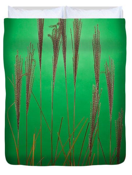 Fountain Grass In Green Duvet Cover by Steve Gadomski