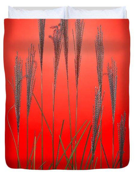 Fountain Grass In Red Duvet Cover by Steve Gadomski