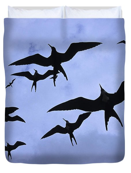 Frigate Birds In Flight. Lighthouse Duvet Cover by Ron Watts