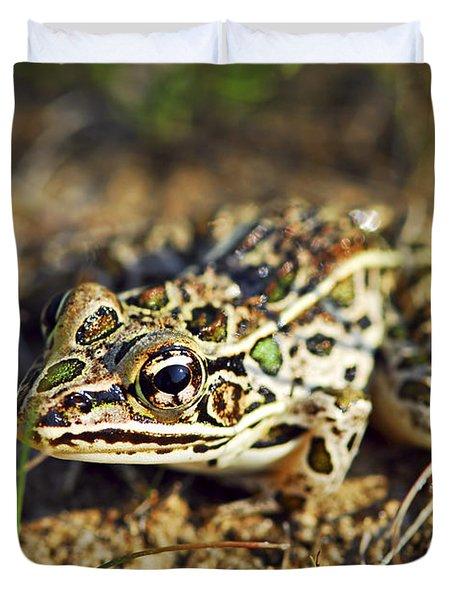 Frog Duvet Cover by Elena Elisseeva