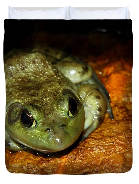 Frog Love Duvet Cover by LeeAnn McLaneGoetz McLaneGoetzStudioLLCcom