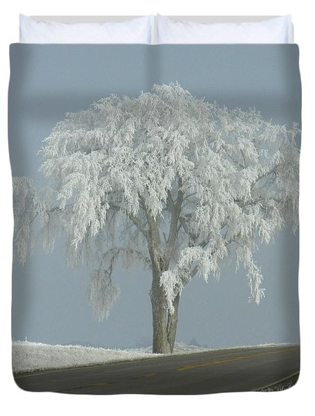Duvet Cover featuring the photograph Frost On The Big Tree  by Penny Meyers
