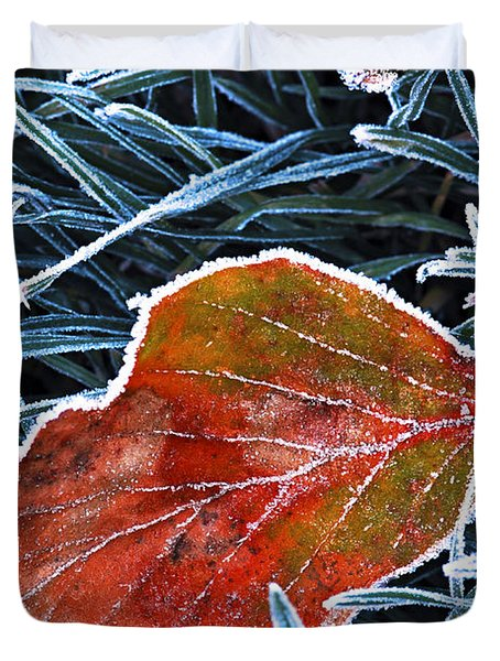 Frosty Leaf Duvet Cover by Elena Elisseeva