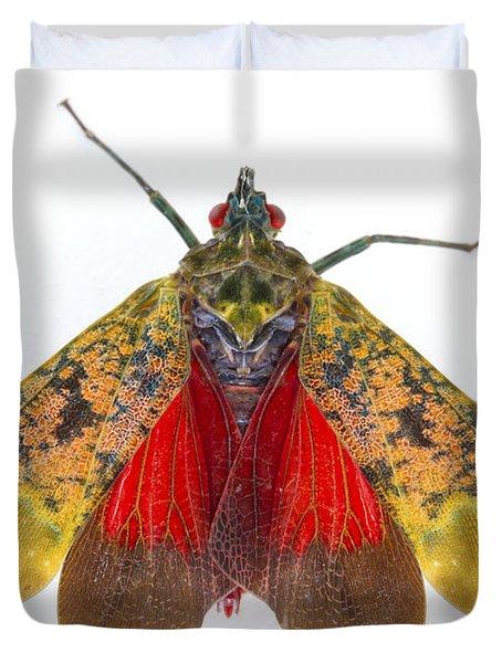 Fulgorid Planthopper Costa Rica Duvet Cover by Piotr Naskrecki
