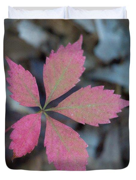 Fushia Leaf 2 Duvet Cover by Douglas Barnett