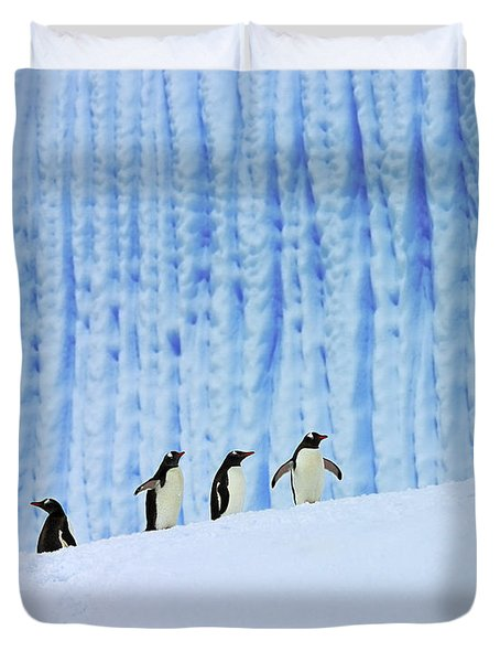 Gentoos On Ice Duvet Cover by Tony Beck