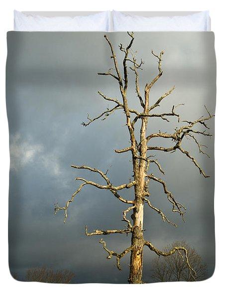 Ghost Tree Duvet Cover by Douglas Barnett