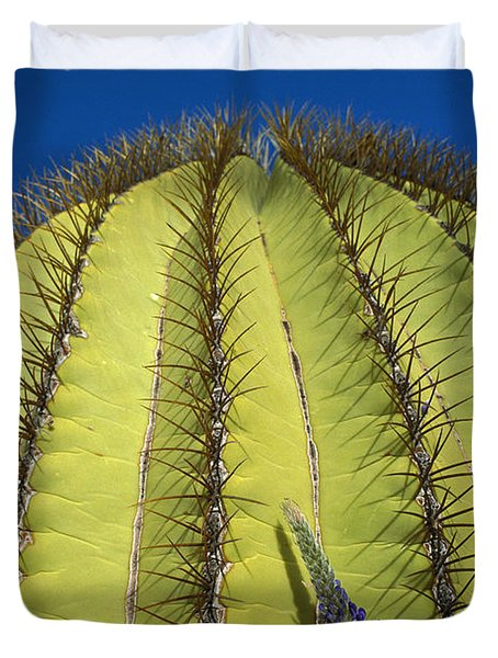 Giant Barrel Cactus Ferocactus Diguetii Duvet Cover by Tui De Roy