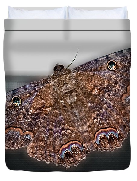 Duvet Cover featuring the photograph Giant Moth by DigiArt Diaries by Vicky B Fuller