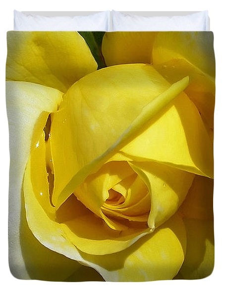 Gina Lollobrigida Rose Duvet Cover by Kaye Menner