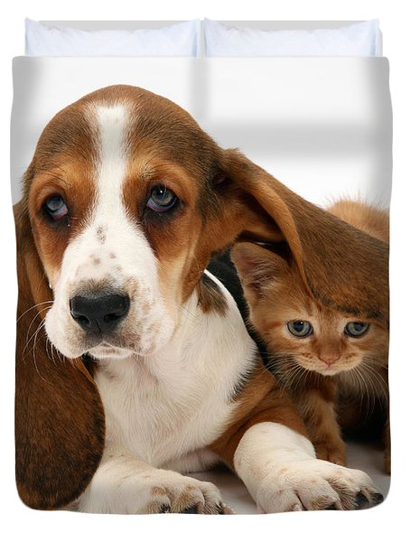 Ginger Kitten And Basset Puppy Duvet Cover by Jane Burton