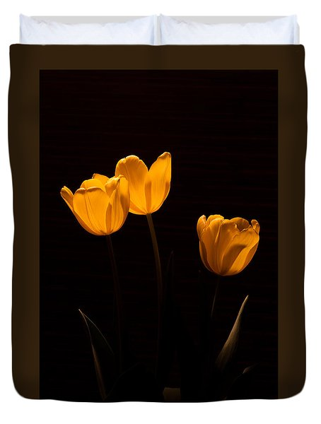Duvet Cover featuring the photograph Glowing Tulips by Ed Gleichman