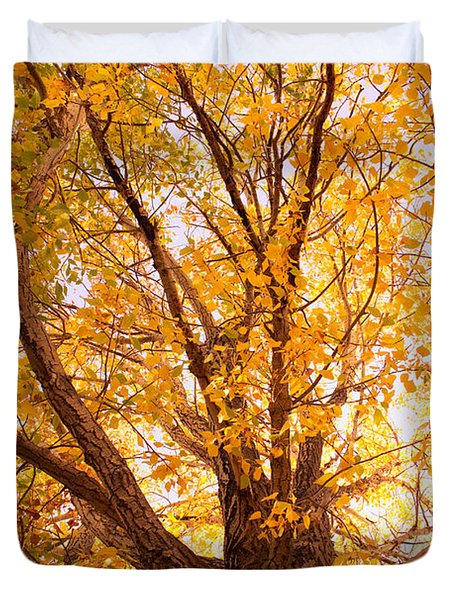 Golden Autumn View Duvet Cover by James BO  Insogna