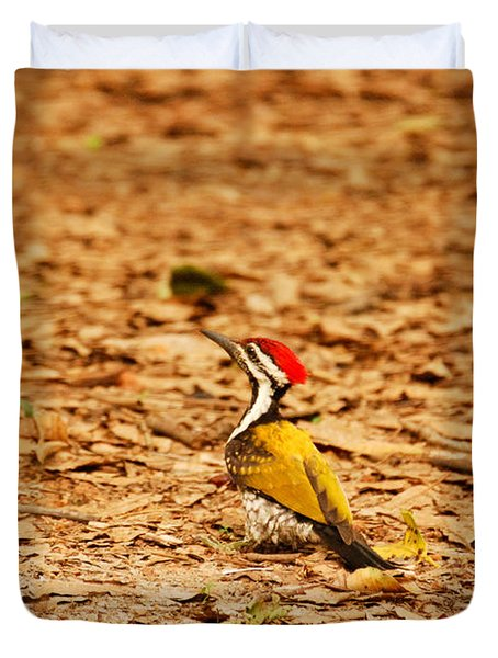 Duvet Cover featuring the photograph Golden Backed Woodpecker by Fotosas Photography