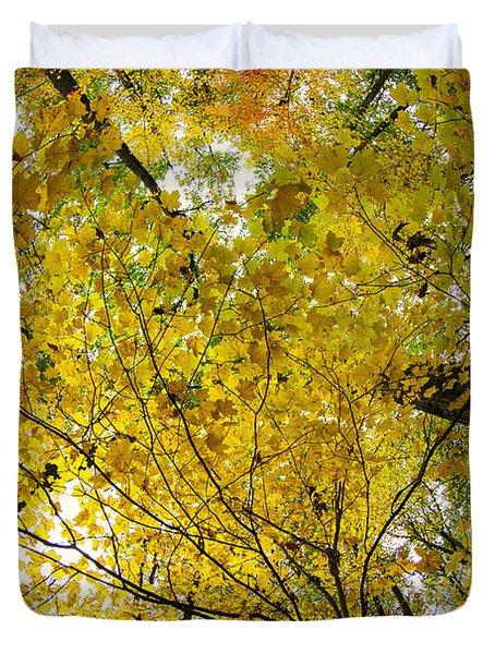 Golden Canopy Duvet Cover by Rick Berk