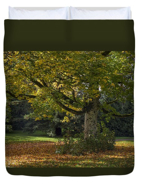 Duvet Cover featuring the photograph Golden Cappadocian Maple. by Clare Bambers