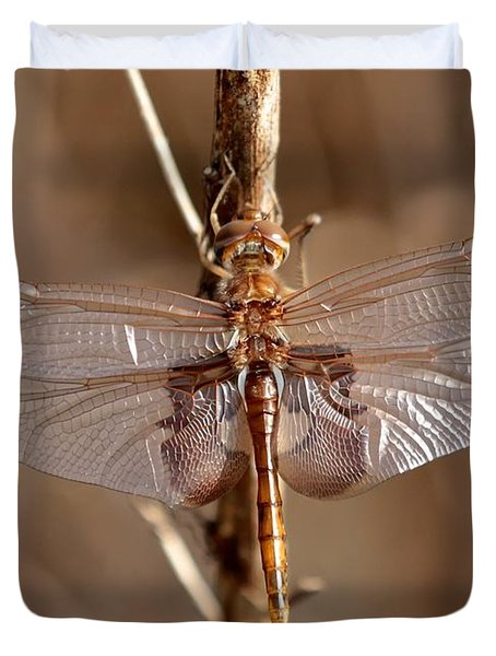 Golden Dragonfly Wings Duvet Cover by Carol Groenen