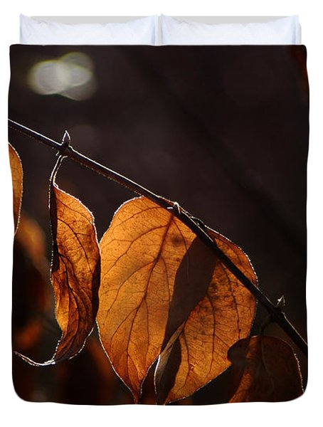 Golden Leaves Duvet Cover by Vilas Malankar