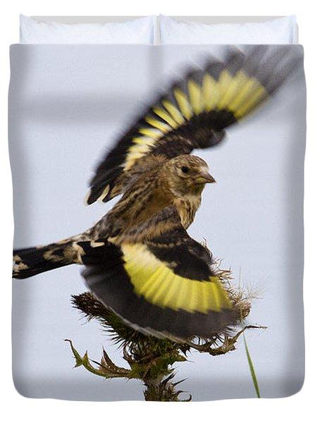 Goldfinch On Thistle Duvet Cover