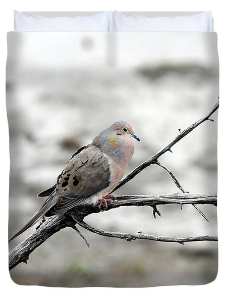 Duvet Cover featuring the photograph Good Morning Dove by Elizabeth Winter