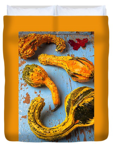 Gourds On Wooden Blue Board Duvet Cover by Garry Gay