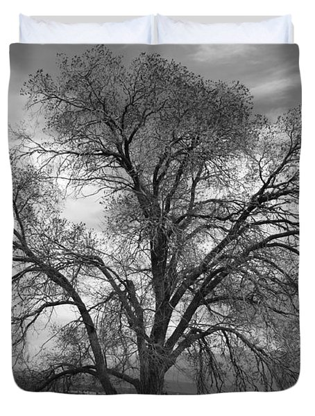 Grand Canyon Life Tree Duvet Cover