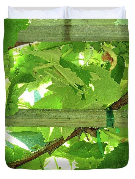 Grape Arbor Duvet Cover by Methune Hively