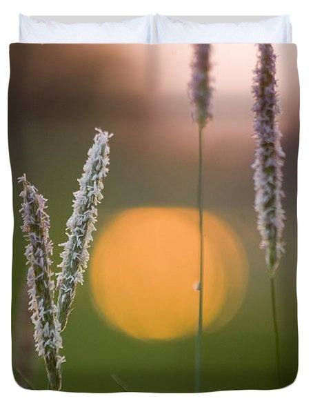 Grass Blooming Duvet Cover by Heiko Koehrer-Wagner